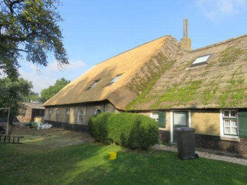 Rieten dak boerderij Bleskensgraaf